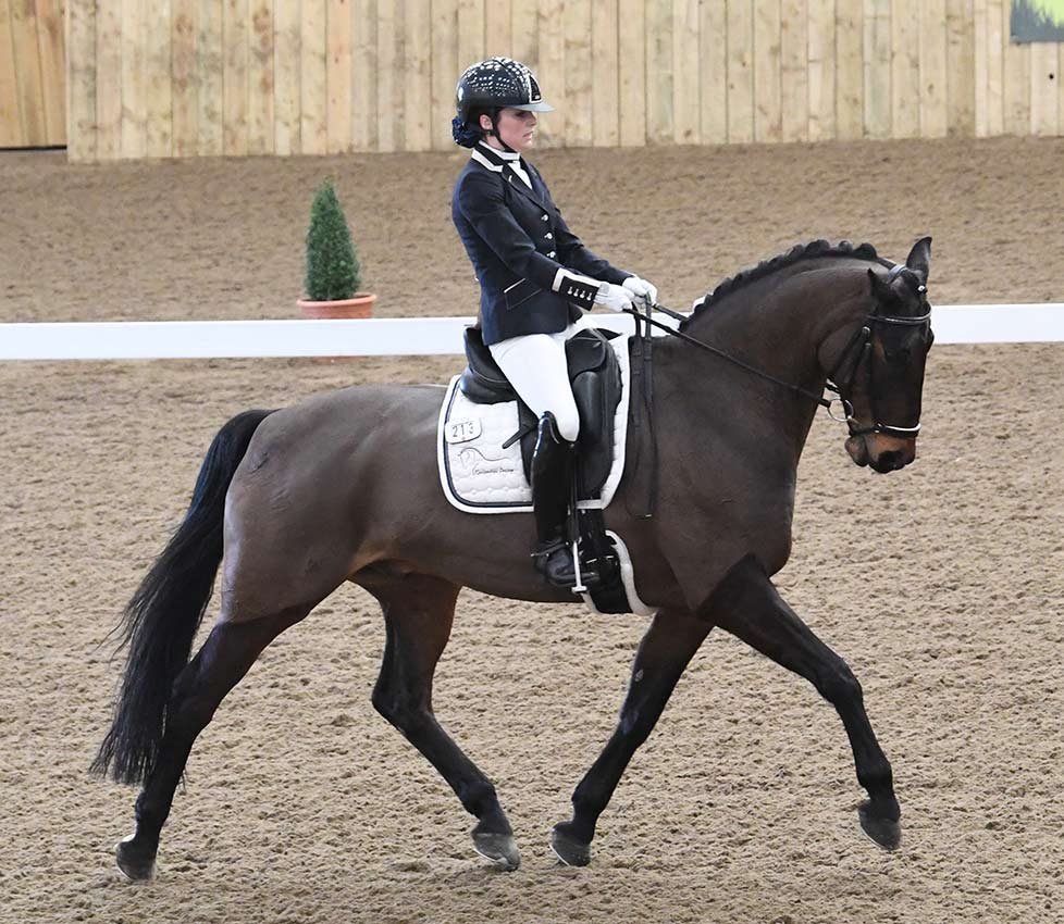 Anna-Brown-Dressage-18