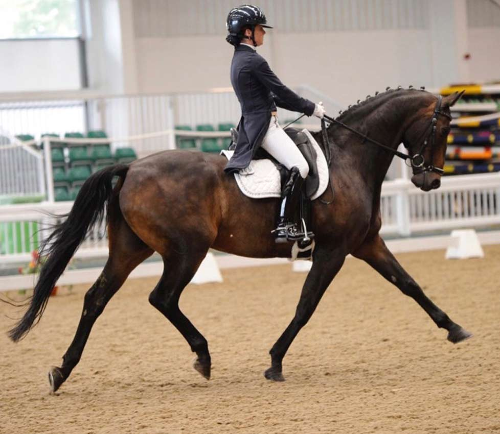 Anna-Brown-Dressage-19